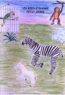 bien-etrange-petit-zebre.jpg